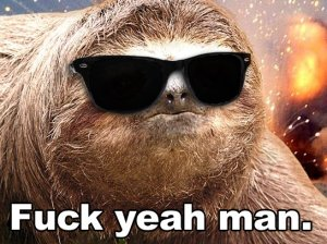fuck yeah sloth